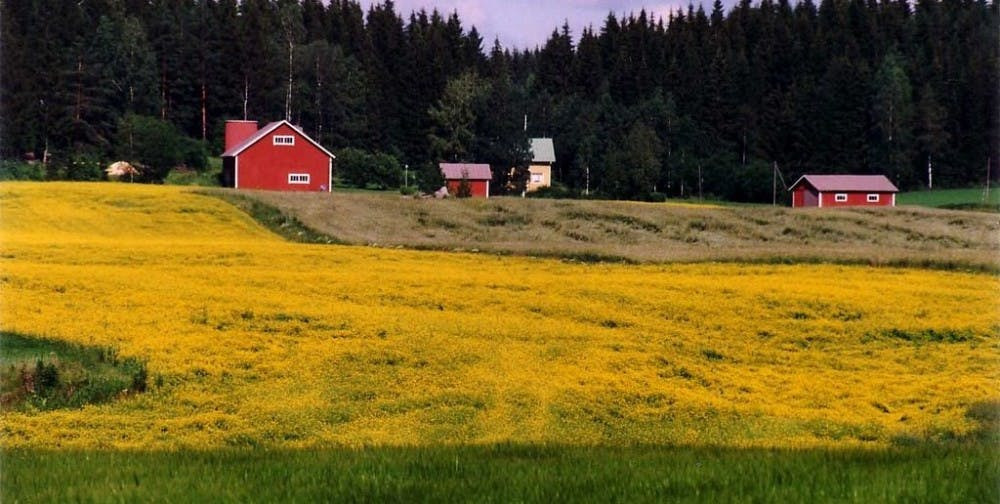 1024px-Rural_landscape-1024x516.jpg