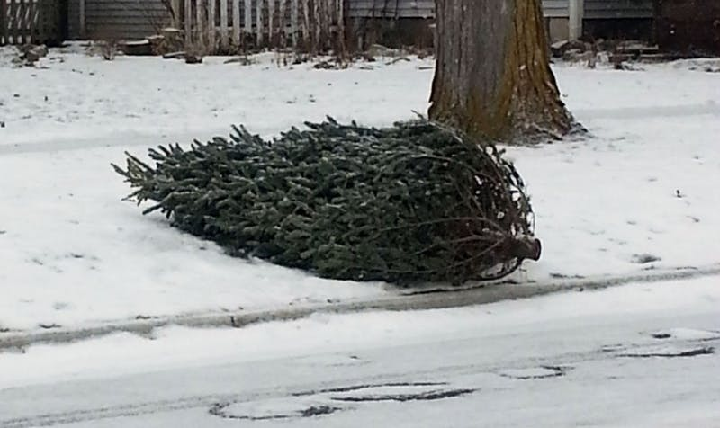 Christmas Tree Pickup.jpg