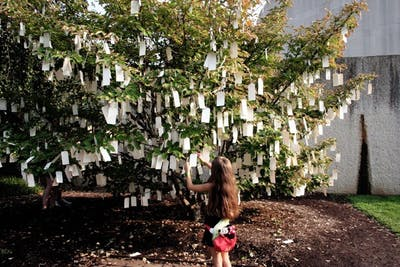 Wish Tree for Washington (1996/2007).jpeg