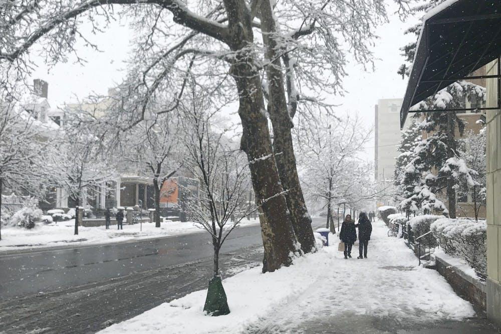 Snow(SarahFortinsky)