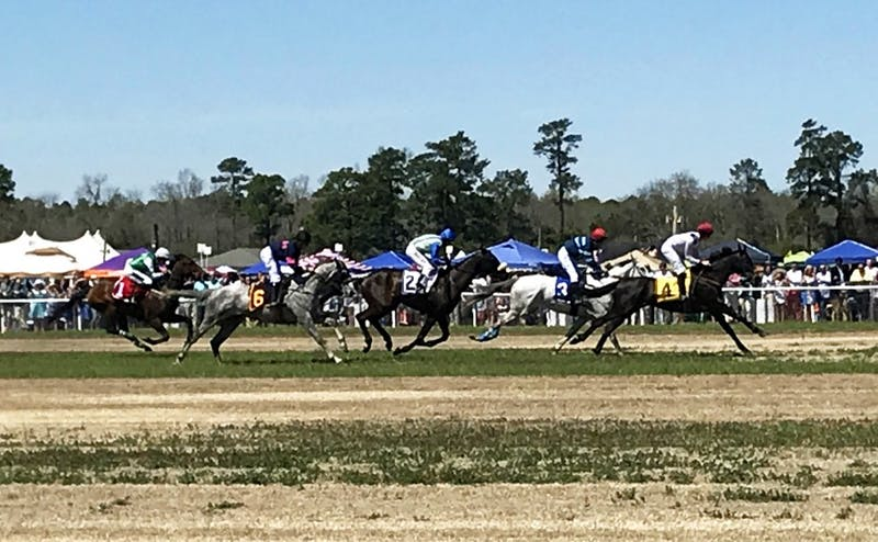 This year's Carolina Cup, held in Camden, S.C., was the last to feature the tailgating spot known as College Park.