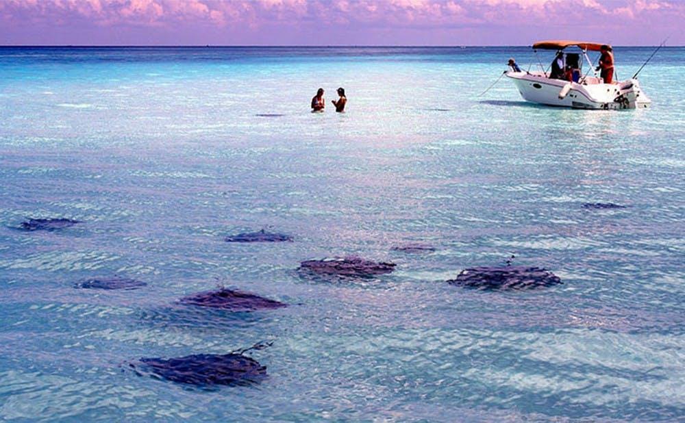 800px-Stingray_City,_Cayman_Islands