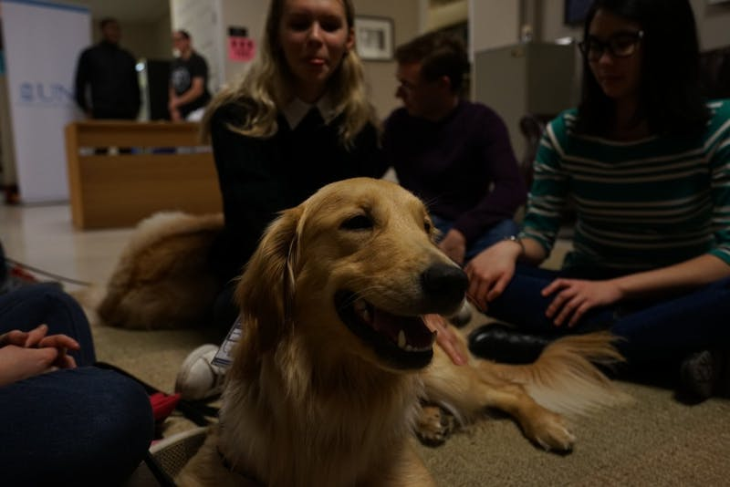 Therapy dog in training Mattox enjoys some treats and company after being a good boy and respectfully listening to The Ethics of Self-Care panel discussion.
