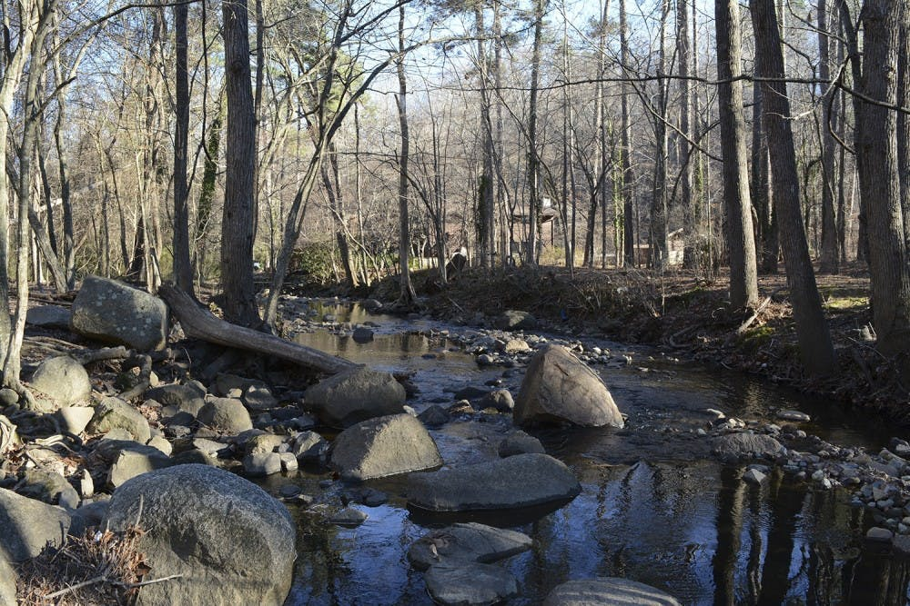 Carrboro's Carolina North Forest and Bolin Creek garner controversy