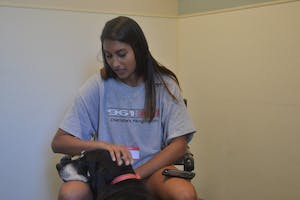 Juhi Patel, a senior computer science major at UNC, volunteers twice a week at the Orange County Animal Services in Chapel Hill.