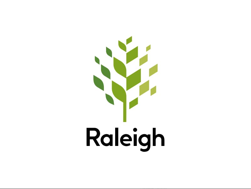 Raleigh invested over $200,000 in the design of a new logo to unify the city's brand image.