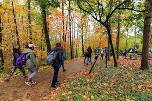 GVL / Emily Frye Students walking on campus on Wednesday October 11, 2017.
