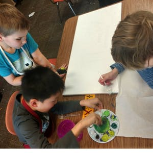 Second grade students at Rogers Elementary School draw trees for an exhibit at Gather, a Bloomington art gallery. The students learned about trees native to Southern Indiana forests in class.