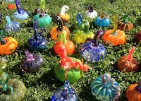 Bloomington Creative Glass Center will put on the eighth annual Great Glass Pumpkin Patch this weekend. It will take place from 4:30 to 6:30 p.m. on Oct. 13 at the Unitarian Universalist Church of Bloomington and from 10 a.m. to 3 p.m. on Oct. 14 at the Monroe County Courthouse Lawn.