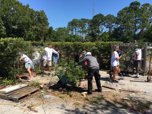 Students from Habitat for Humanity at IU travel to Fort Pierce, Florida, over spring break to restore a home in an impoverished neighborhood. They cleaned and removed bushes from the back of a housing good warehouse that donates its proceeds to future home builds.
