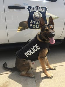 K9 Smitty is one of two dogs working for the Indiana State Police who now has body armor to protect him.