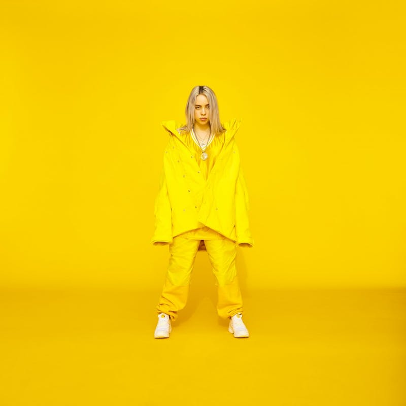 Billie Eilish, whose full name is Billie Eilish Pirate Baird O'Connell, is an American singer and songwriter. The first time she got involved with music was in the Los Angeles Children's Chorus when she was only 8 years old.