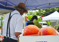 Daniel Graber sells fruit at the Bloomington Farmers' Market in 2013 in front of a box of peaches, his main crop. The city's director of economic and sustainability development discussed the city's solar energy initiative at Saturday's market.