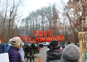 Protestors gathered Thursday morning outside the Yellowwood State Forest to protest the auctioning off of 299 acres. The land was sold for just over $108,000.