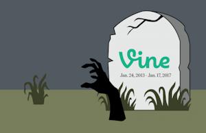 vine2.png