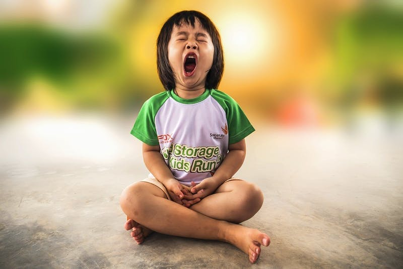 PUBLIC DOMAIN Yawning is found to be contagious and is a form of Echophenomena.