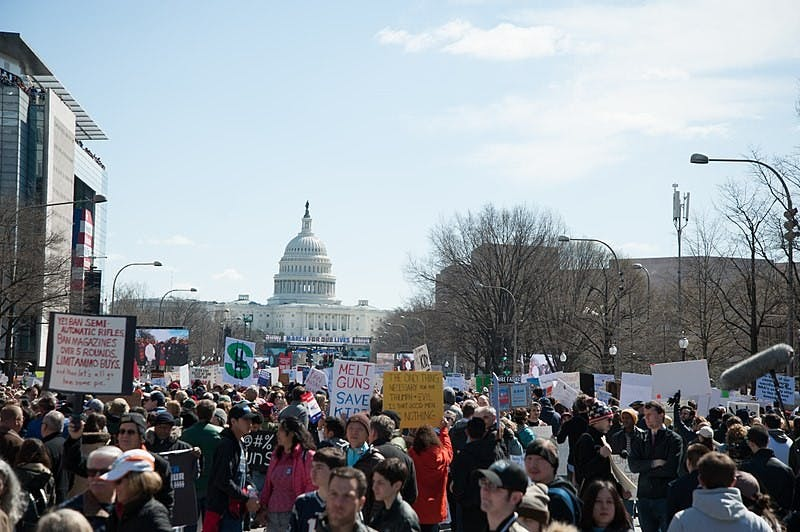 ROSA PINEDA/CC BY SA-4.0 The March in Washington, D.C. on March 24 was one of the largest gatherings in the country.