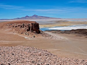 PUBLIC DOMAIN The fetus or newborn Ata skeleton was disovered in the Atacama Desert in Chile in 2003.