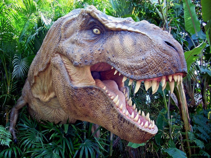 SCOTT KINMARTIN/CC BY 2.0 A new study looks into the details of how an asteroid wiped out the dinosaurs.