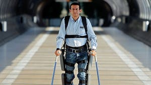 PUBLIC DOMAIN Stem cells can be embedded into scaffolds to repair spinal cord injury.