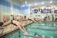 DIVING ME CRAZY: Swimmers from Brandeis and Merrimack College dive into the pool during their meet on Jan. 13.