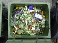 """CHILD HUNGER: According to the film """"Wasted! The Story of Food Waste,"""" 40 percent of the food being produced in the U.S. is wasted."""