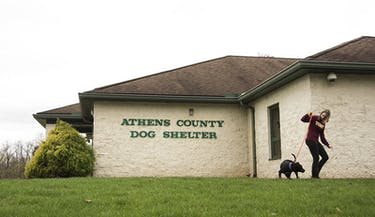 Anna Turner walks Gordy, a pitbull mix, in front of The Athens County Dog Shelter in Chauncey. (FILE)