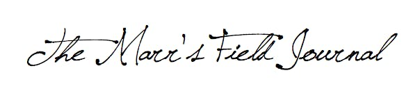 Marr's Field Journal accepting submissions