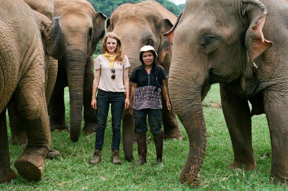 D.C. Environmental Film Festival closes 26th festival