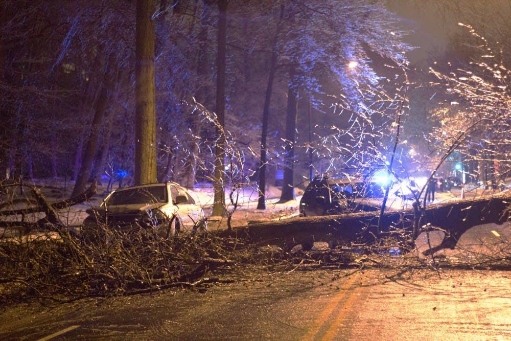Fallen tree blocks Massachusetts Avenue