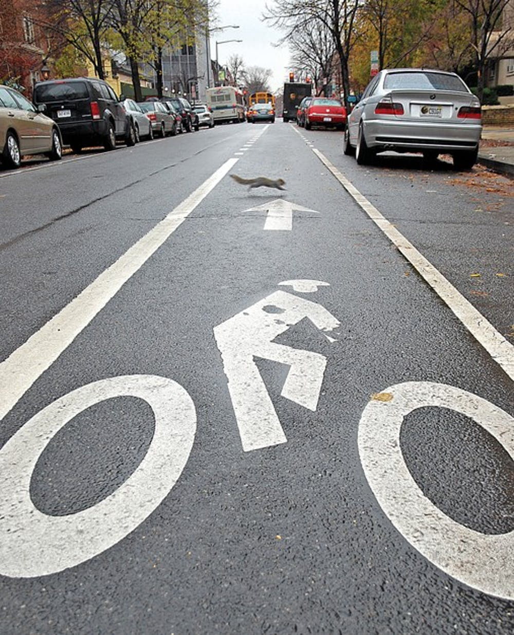 Proposal for new bike lane receives support from students and residents alike