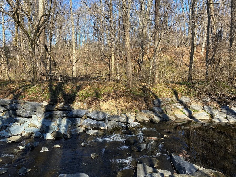 Escape the city with walking trails to get you out and about in DC