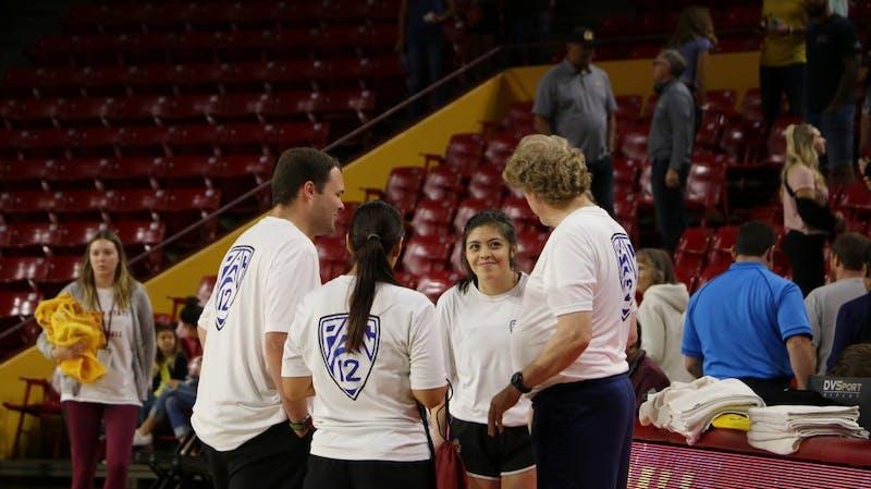volleyball-ball-retrievers.JPG