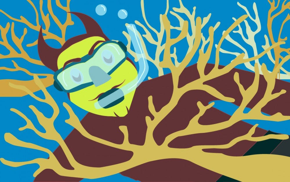 sparky-at-the-coral-reef
