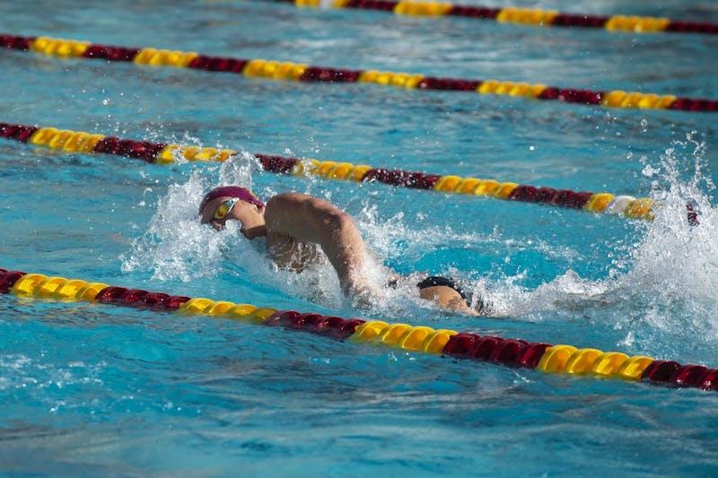 SwimnDive.jpg