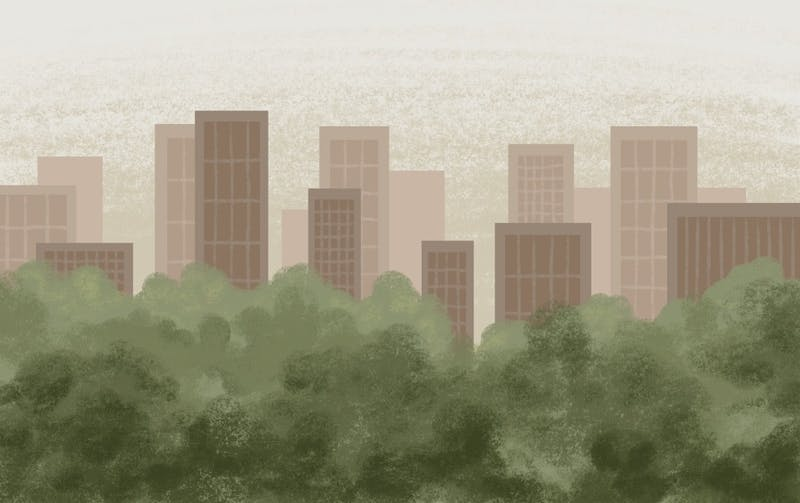nghi-tran-urban-forest