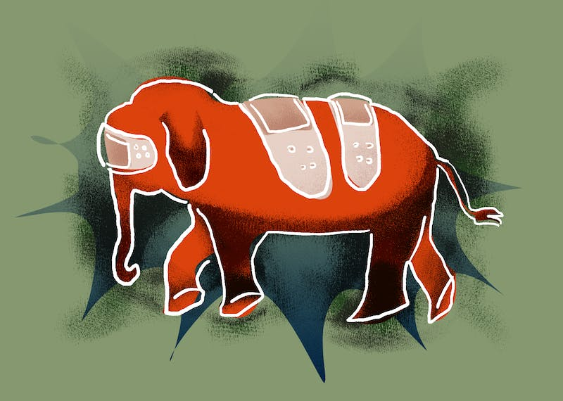 An illustration of an elephant covered in band-aids.