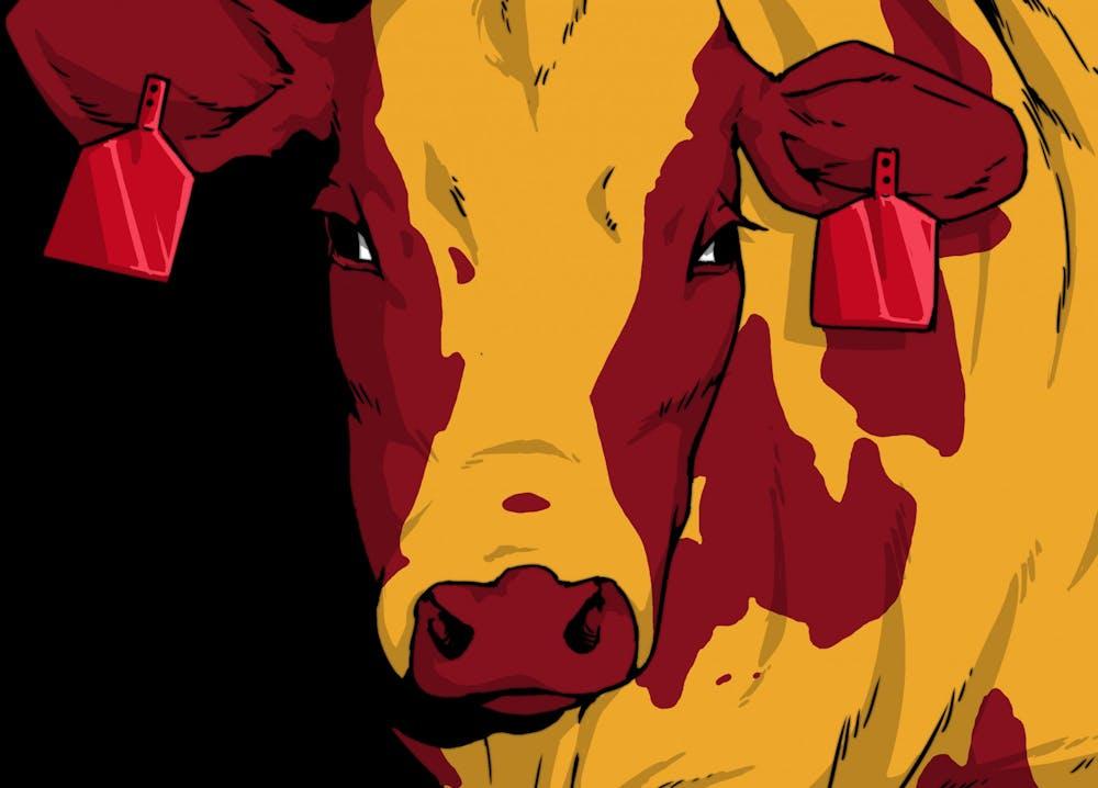 jack-streveler-martyley-1013-cow