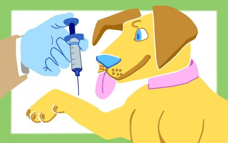 Doggy Vaccines.jpg