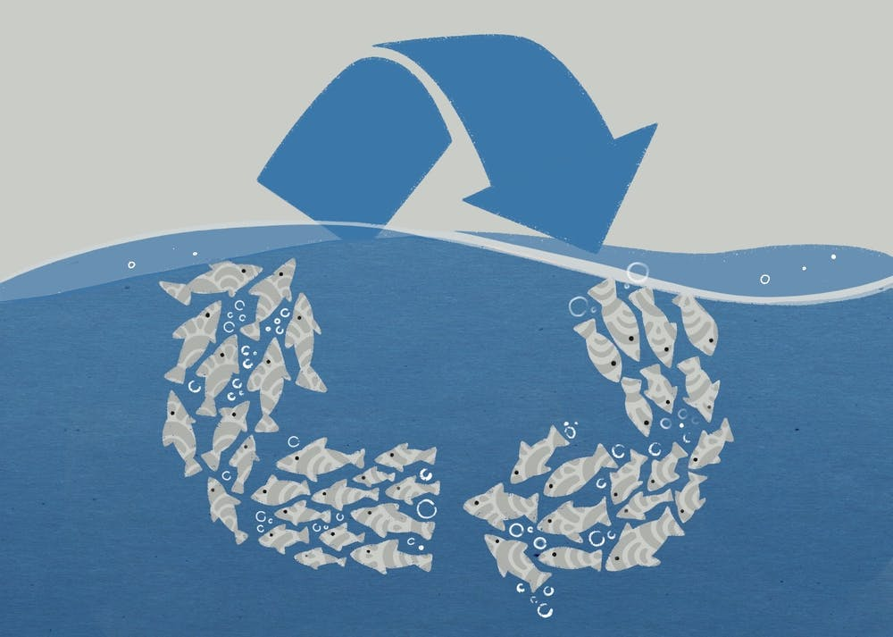 An illustration of the recycle symbol with fish representing two of the arrows.