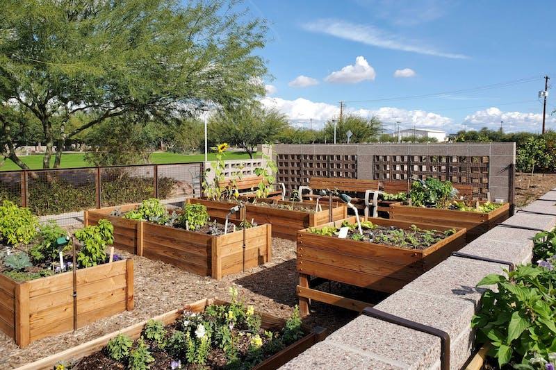 garden commons.jpg