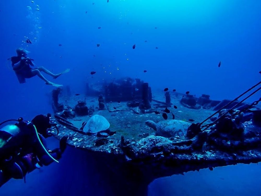 The Devil Divers Club Offers Scuba Certification And Underwater