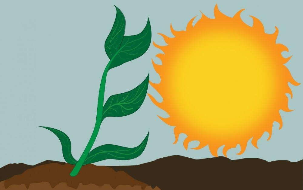 abigail-solar-into-energy-biztech-100