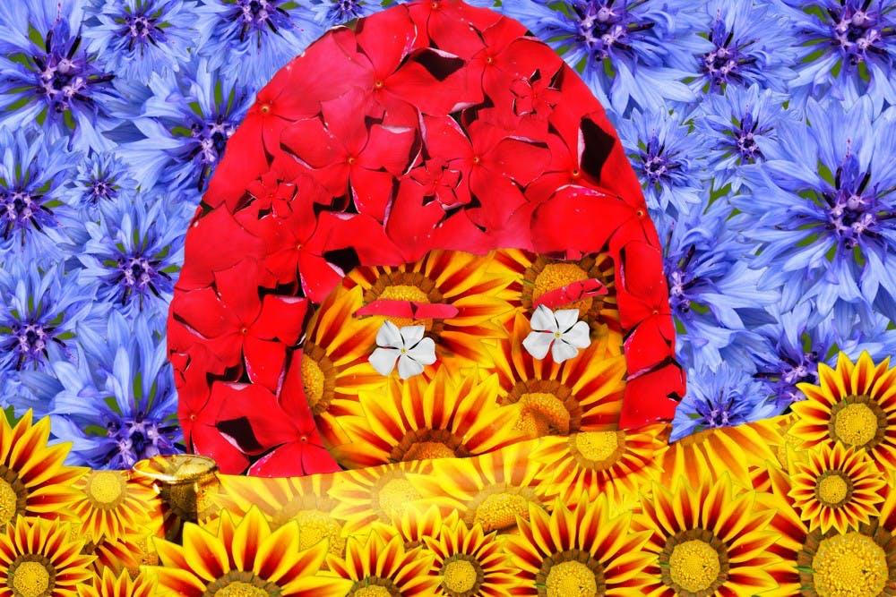 flowergraphic