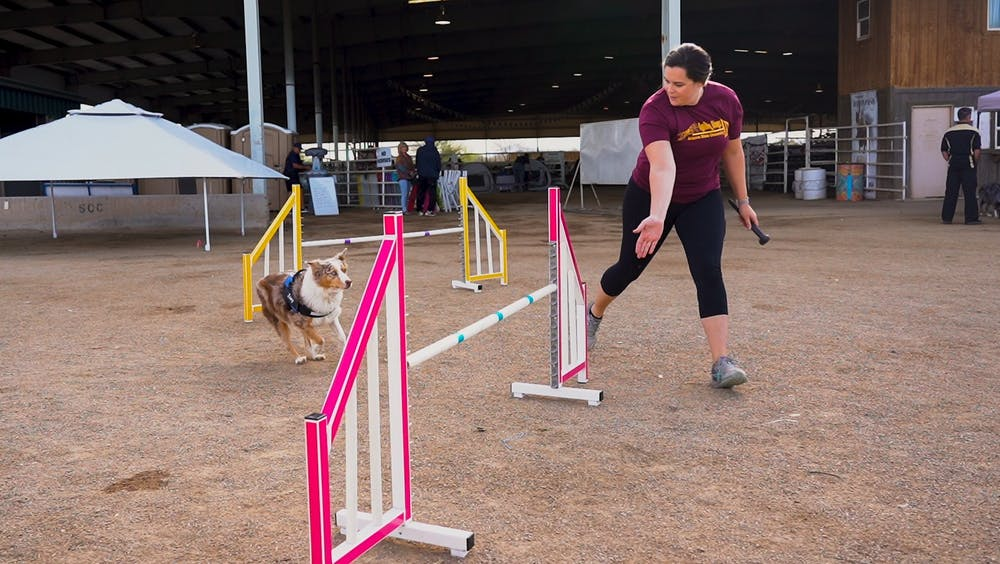 Meredith Moore leads her dog, Zoey, up to a jump in practice for ASU Agility Dogs.