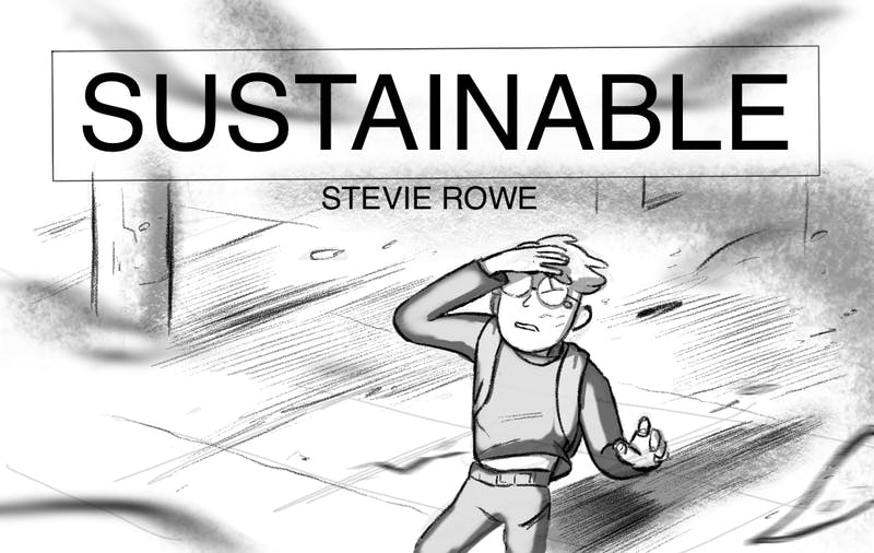 Stevie_sustainable_header.png
