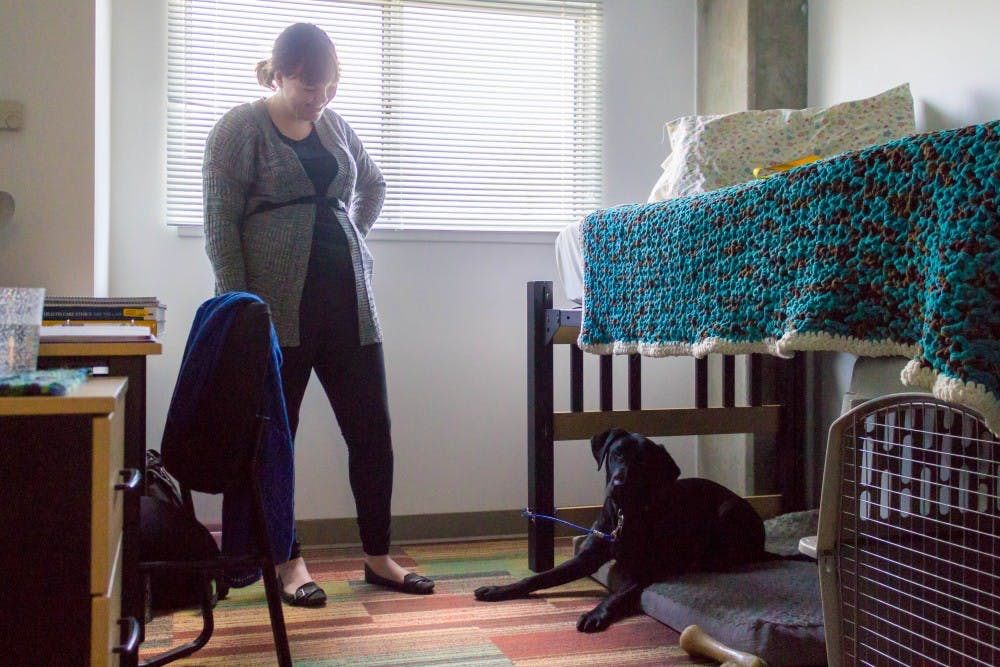 rules and regulations on pets in asu dorms the state press