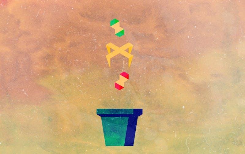 compost-2.jpeg