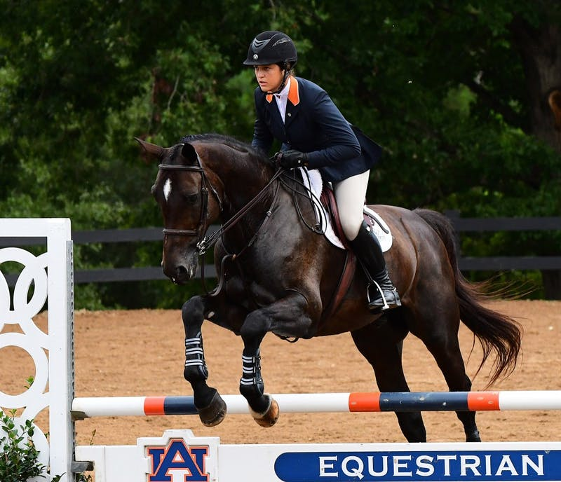 McKayla Langmeier competes in Equitation over Fences.  South Carolina vs Auburn Equestrian on Friday, September 28, 2018 in Auburn, Ala.  Anthony Hall/Auburn Athletics