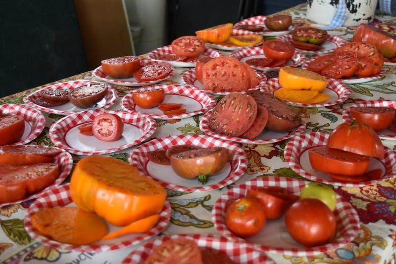 The 10th annual Waverly Tomato Showdown on Saturday, July 22, crownedAmanda Ostaszewski first place winner.